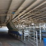 New 32 x 15 x 4.2m Dairy Shed in Margaret River, WA