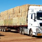 AUSPAN joined RRT's convey of 23 trucks loaded with hay